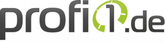 Logo Profi1.de groß